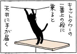 壁紙をはがすネコの4コマ猫漫画