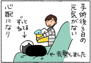 去勢後じっとしている猫の4コマ猫漫画