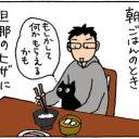 猫を溺愛する旦那の4コマ猫漫画