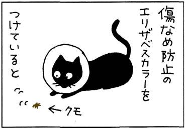 エリザベスカラーを付けると思うように動けない猫の4コマ猫漫画