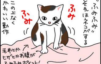ふみふみする猫の漫画