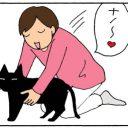 飼い主を拒絶する猫の4コマ漫画