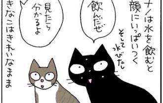 猫の水の飲み方の4コマ猫漫画