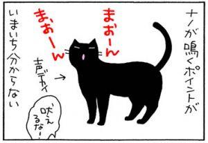 激しく構うと落ち着く猫の4コマ漫画