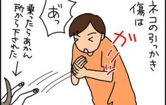 猫に引っかかれた漫画