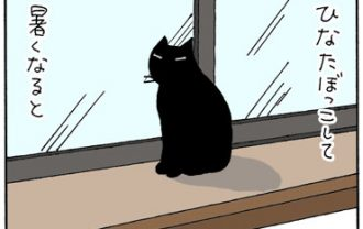 日光浴して冷やすネコの4コマ猫漫画