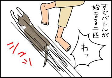 走り回る猫の漫画