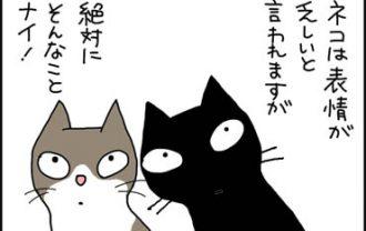 表情の変わる猫の漫画