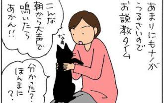 関西人は猫にも厳しい猫漫画