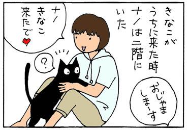 2匹目がやって来た4コマ猫漫画