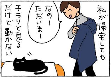 娘には反応する猫の4コマ漫画