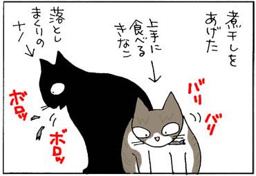 煮干しを食べる猫の4コマ漫画