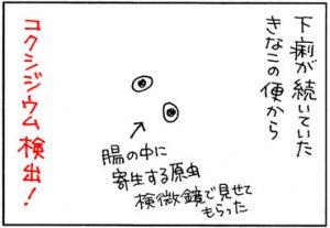 コクシジウムに罹ったネコの4コマ猫漫画