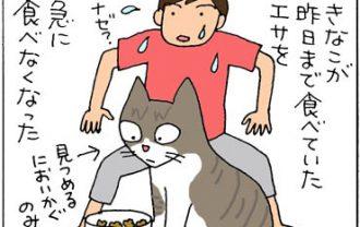 エサを食べなくなった猫の4コマ漫画