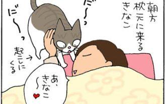 おしりを向ける猫の4コマ漫画