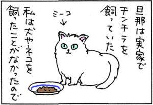 猫と共用の皿を使う4コマ猫漫画