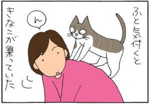 運動神経のよい猫の4コマ猫漫画