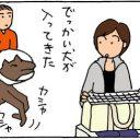 動物病院でビビる猫の4コマ猫漫画