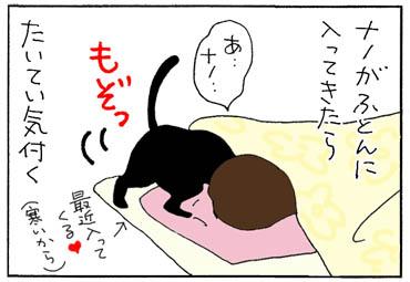 忍者のような猫の4コマ猫漫画