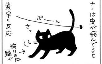 スクリーンセイバーに迷う猫の4コマ猫漫画