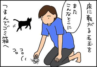 しつこいネコ毛の猫漫画