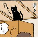 乗ったのに下りれない猫の4コマ猫漫画