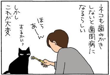 猫の歯ブラシをにおいだ4コマ猫漫画
