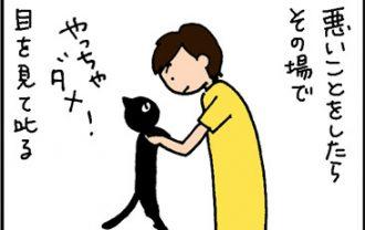 猫を叱るときはこうする4コマ猫漫画