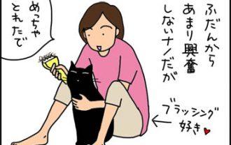 自分の毛玉が好きな猫の漫画