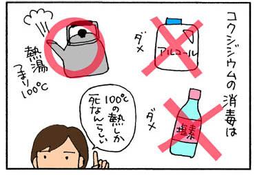 コクシジウムの消毒の猫漫画