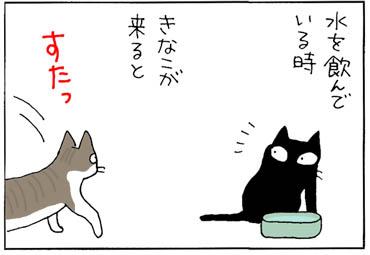 神経質な猫の4コマ猫漫画