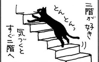 呼びつける猫の4コマ猫漫画