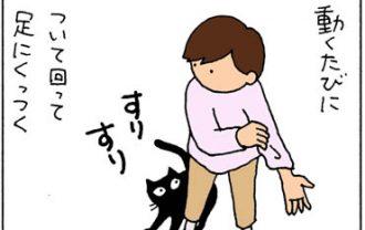 くっつくけど抱っこは嫌な4コマ猫漫画