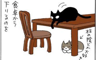 理不尽な怒りの4コマ猫漫画