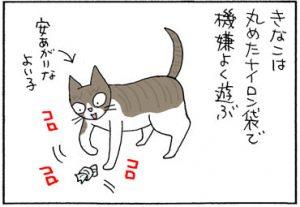 ネコの爪にやられる猫漫画