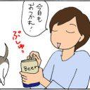 ビールの好きな猫の4コマ猫漫画