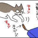 本のしおりを抜き去る猫の4コマ猫漫画
