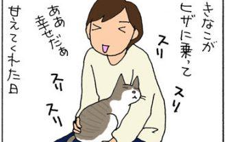 フライパンの柄にスリスリする猫の4コマ猫漫画