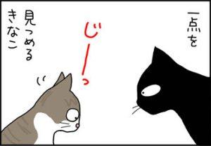 トイレを見つめる猫の漫画