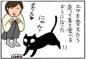 エサにワガママな猫の4コマ漫画