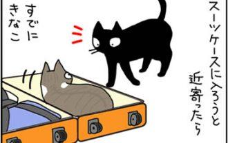 スーツケースにはいるネコ漫画