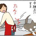 イメージ通りの猫の4コマ猫漫画