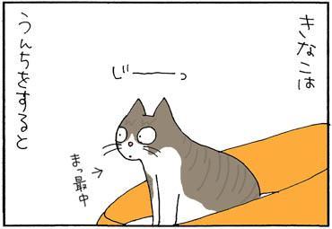 トイレハイ色々4コマ猫漫画