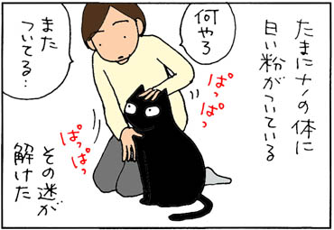 ネコ砂を付ける4コマ猫漫画