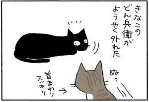 威嚇する兄ネコの4コマ猫漫画