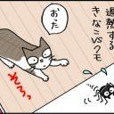 クモを狩りたいのに狩れない猫の4コマ猫漫画