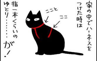 外に出ると細くなる猫の4コマ猫漫画