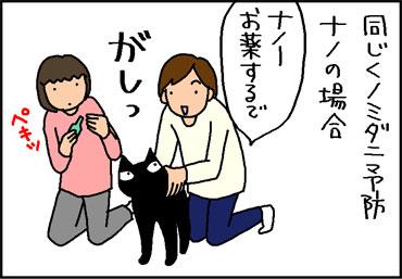 ノミダニ予防の薬をする4コマ猫マンガ