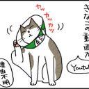 youtubeで急上昇画像になった猫の4コママンガ