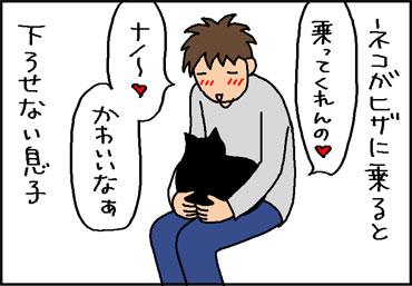 猫に対する息子の愛の4コマ猫まんが